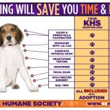 chart outlining cost savings of dog adoption