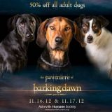 dogs on promo poster parody of breaking dawn