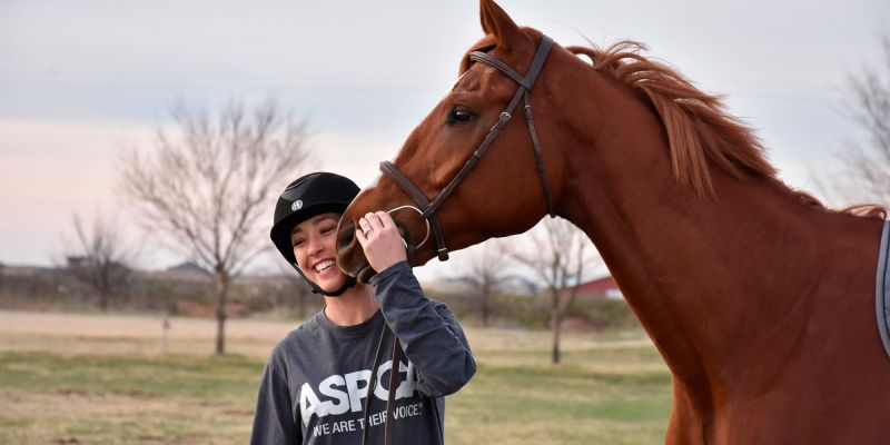 woman smiles with brown horse