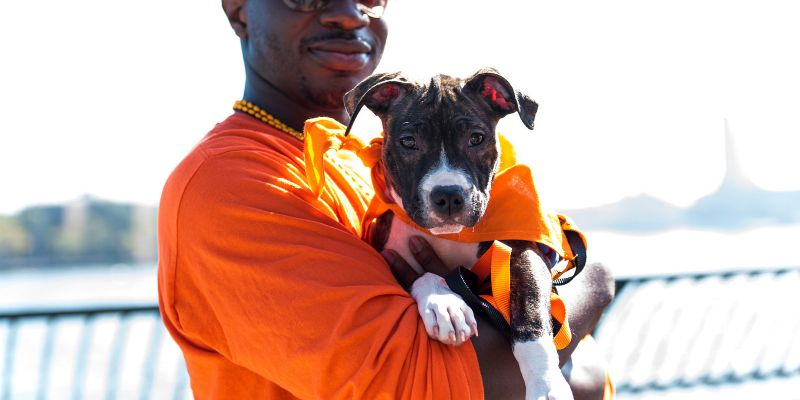 person outdoors in orange tee shirt holding tan and black puppy in an orange bandanna