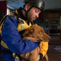 joel lopez holds dog while wearing ppe