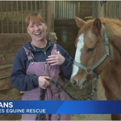 woman with horse inside barn