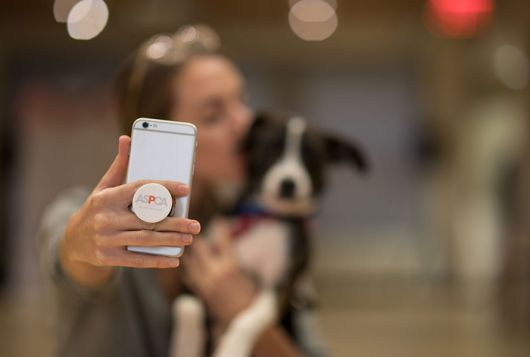 dog having selfie taken with staff aspca logo