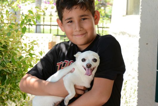 little boy holding small white dog outdoors