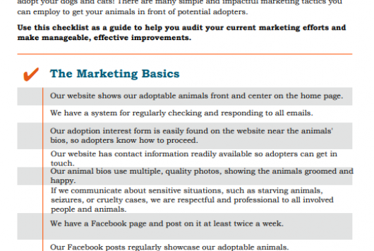 screenshot of cover of marketing checklist