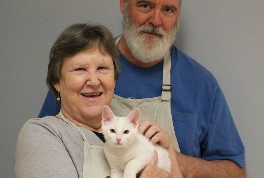 man and woman smiling with white cat