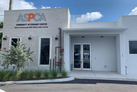 exterior of the white, single story ASPCA veterinary center in Miami blue skies