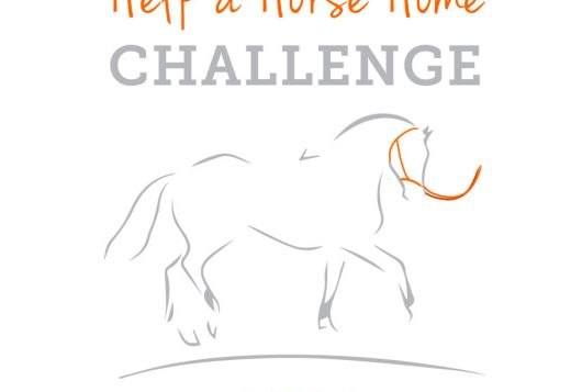 Help a Horse Home contest logo, gray sketched horse