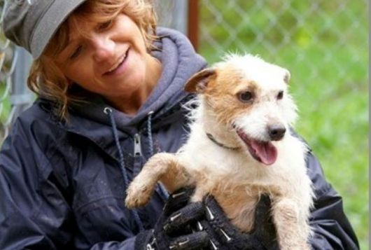 pam reid with a happy dog