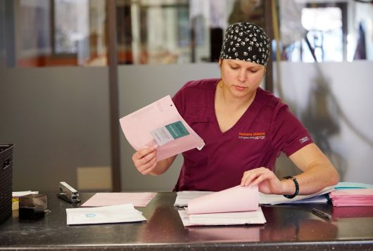 individual reviewing paperwork