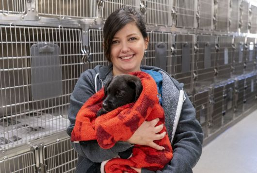 Staff holding puppy in kennels
