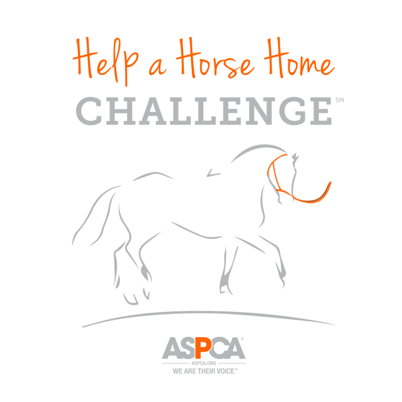 help a horse home orange and gray logo